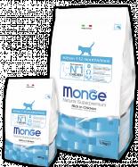 Monge Cat Корм для котят 400г скидка 29%