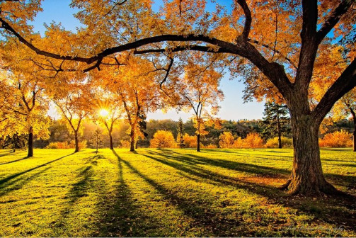 Красивая осень на BEGETON: просмотры, проверки, быстрое добавление и редизайн