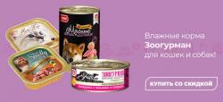 -15% на влажные корма Зоогурман для кошек и собак!