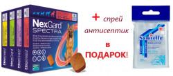 Спрей антисептик в подарок при заказе Нексгард Спектра/3шт