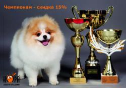 Чемпионам скидка 15%