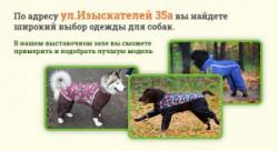 Широкий выбор одежды для собак по адресу Изыскателей 35а