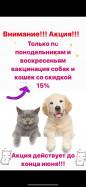 Вакцинация собак и кошек со скидкой 15%