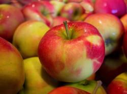 Ежедневное употребление яблок минимизирует риск онкологических заболеваний.