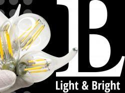 Новинка каталога - светодиодные лампы Light&Bright