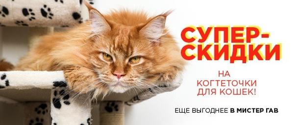 Скидка 20% на когтеточки для кошек!