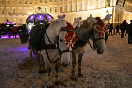Фотосессии в Санкт - Петербурге и Лен.области