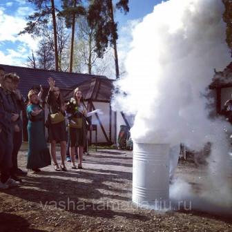 Крио шоу на праздник, эксперименты с жидким Азотом