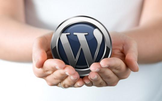 Обучение сайтостроению (wordpress) через Скайп
