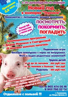 Новогодние программы для детских групп