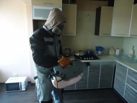 Санобработка в Тольятти