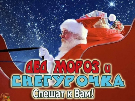 закажи Деда Мороза и Снегурочку