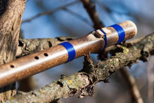 Курсы обучения игры на этнических флейтах (он-лайн и лично)