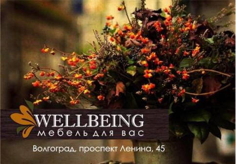 Wellbeing, мебельный салон