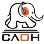 Слон, торговая компания