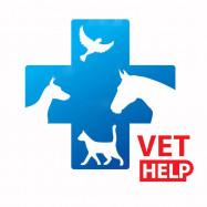 Питомец, ветеринарная клиника