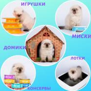 ЗОО-НИКА, ООО, магазин товаров для животных