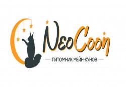 Neo Coon, питомник  мейн-кунов
