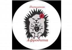 Афродита, питомник -африканский карликовый еж