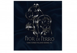 Fior Di Ferro Kennel