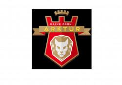 Arktur, питомник кошек породы мейн-кун