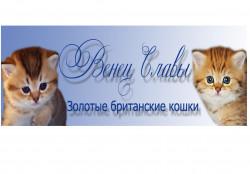 Венец Славы, золотые британские кошки