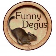 Питомник дегу Funny Degus