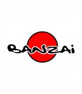 Банзай, магазин игровых приставок