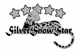 SILVERSNOWSTAR, питомник бенгальских кошек