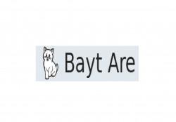 Bayt-Are, профессиональный питомник кошек породы мейн кун