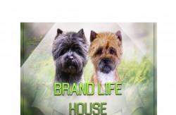 Brand Life House