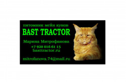 BAST TRACTOR, питомник мейн кунов
