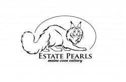 Estate Pearls , питомник кошек Мейн Кун