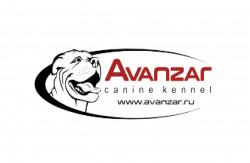 AVANZAR, питомник пород Ка Де Бо и Kонтинентальный бульдог