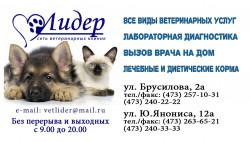 Лидер, ветеринарная клиника