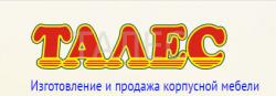 Талес Воронеж