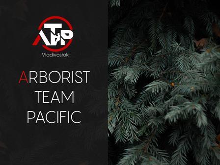 Arborist Team Pacific