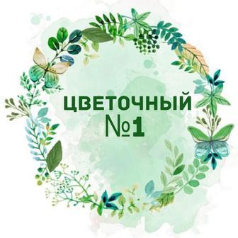 Цветочный №1