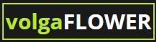 Поволжская цветочная компания