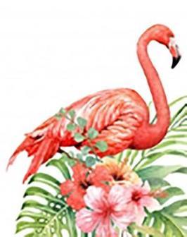 Фотомастерская Фламинго