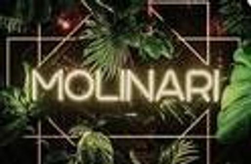 Молинари