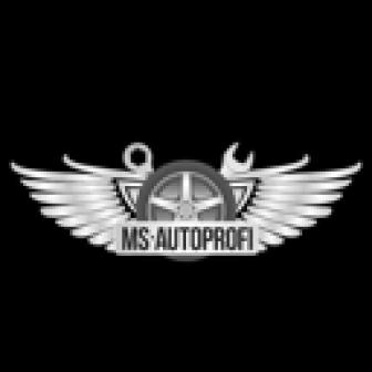 MS-Autoprofi