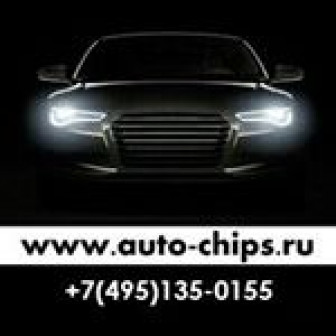 Auto chips