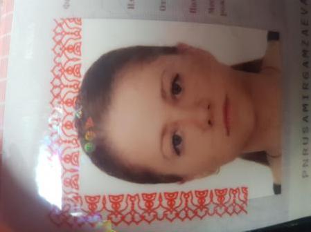 Амиргамзаева Алина Юрьевна