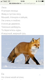 Писарева Анна