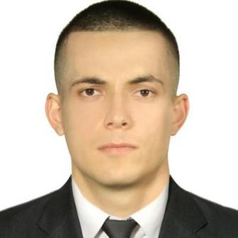 ДЗИЦЦОЕВ ДАВИД ИРБЕКОВИЧ