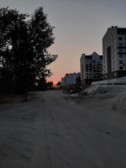 Битнерова Елизавета Алексеевна