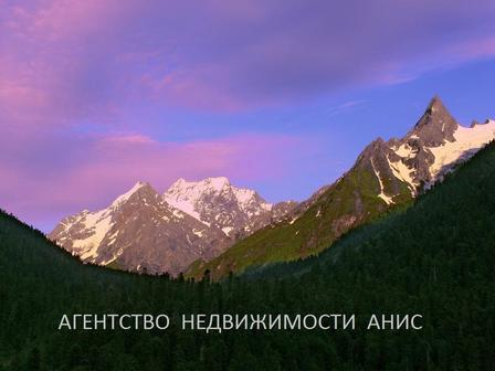 Анисов Александр Александрович