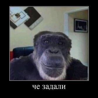 Ковальский Виталий Борисович
