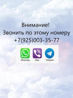 Савельева Светлана Дмиртриевна
